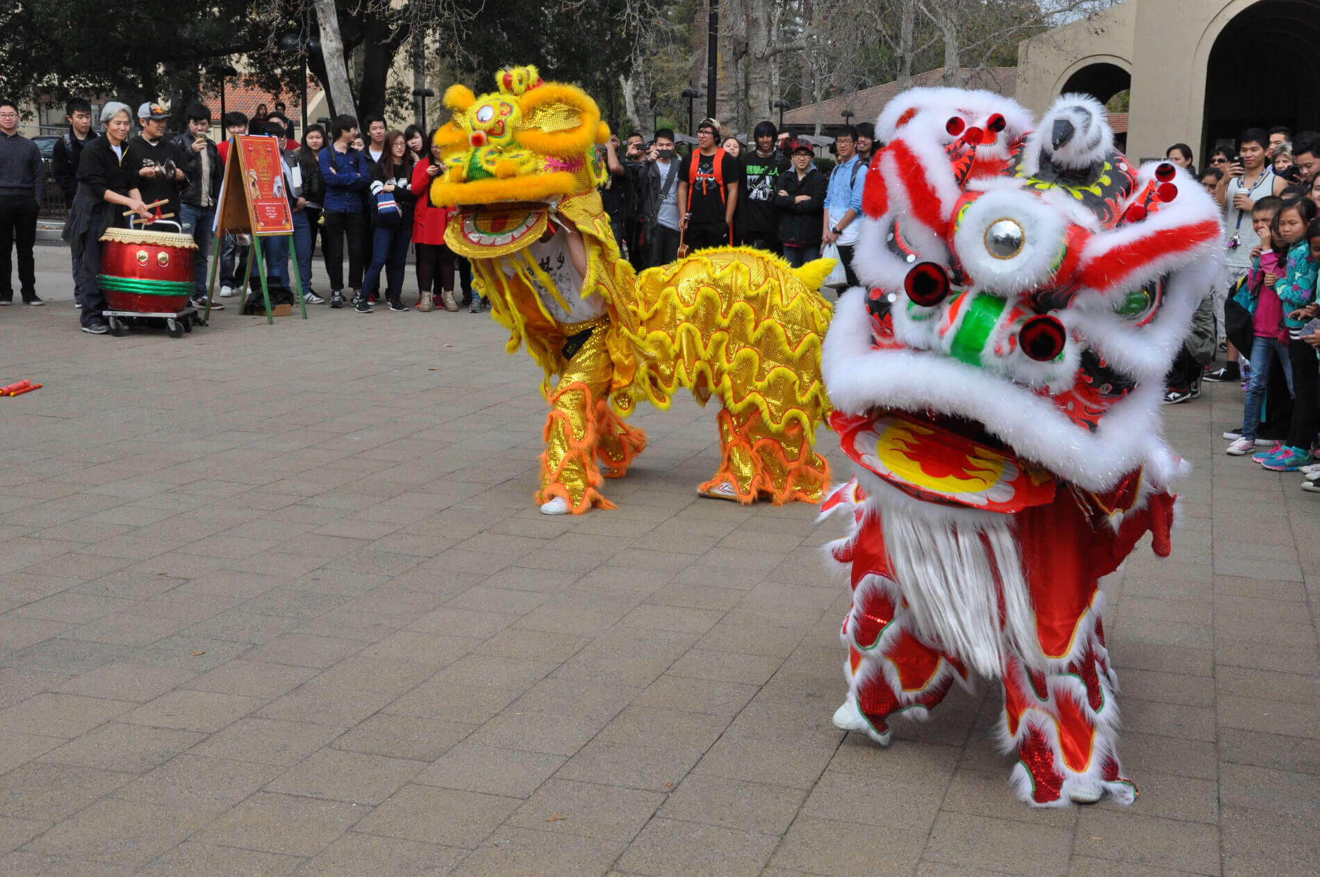 Dragons at a chineese new years celebration