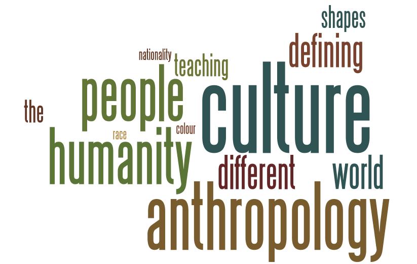 Cultural Anthropology by Nancy Bonvillain (2012, Paperback, Revised)