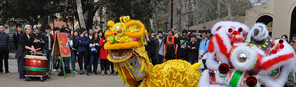 Dragon and lion dancers
