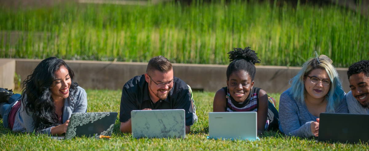 students in grass with laptops
