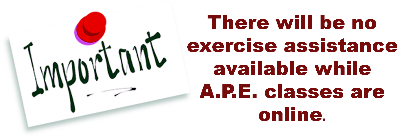 There will be no exercise assistance available while APE classes are online.  Greg Salas