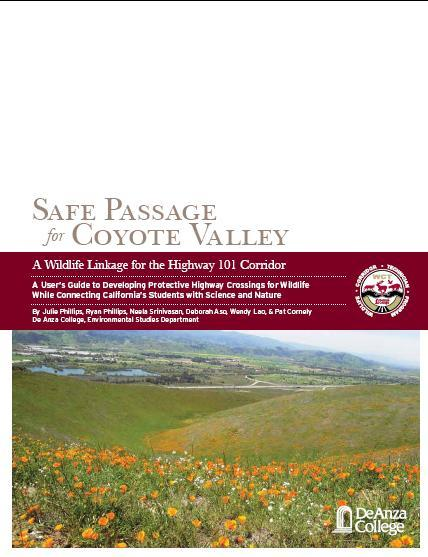 Safe Passage Document