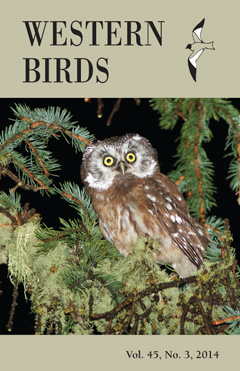 Western Birds Journal