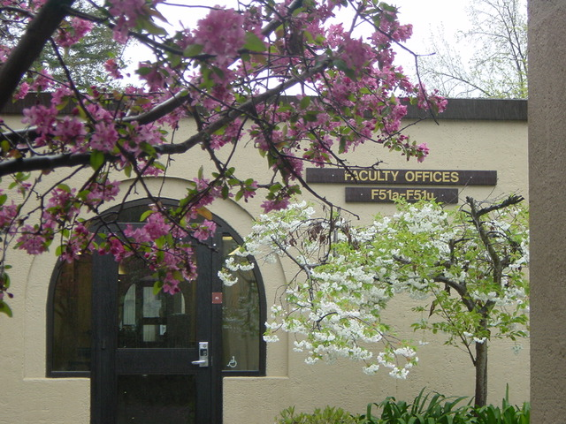 De Anza campus, building F5, flowering branches in foreground