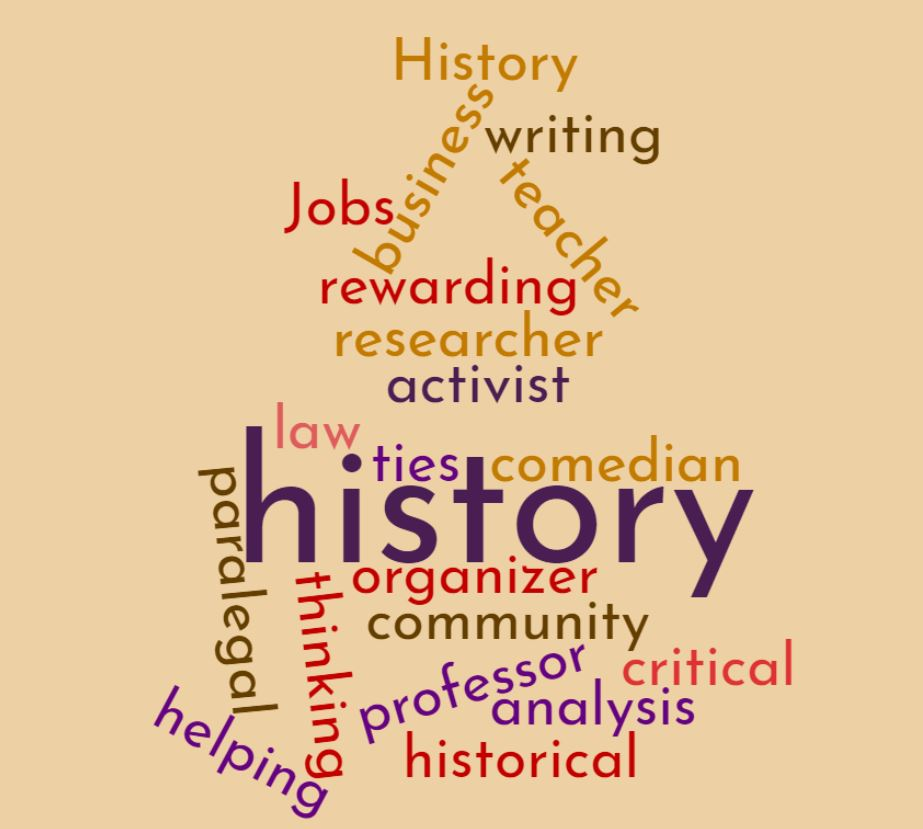 wordcloud of jobs for history majors