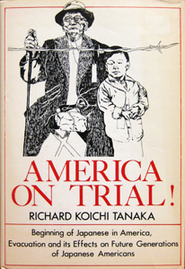 America on Trial! book cover