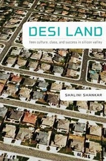 Desi Land book cover