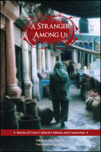 A Stranger Among Us book cover